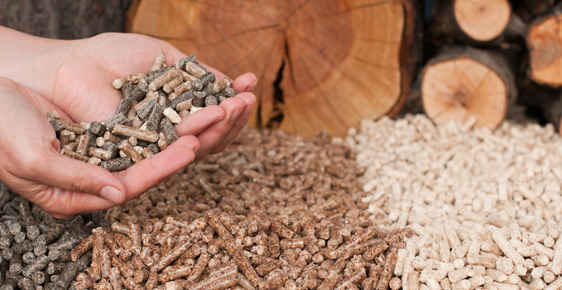 Holzpellets